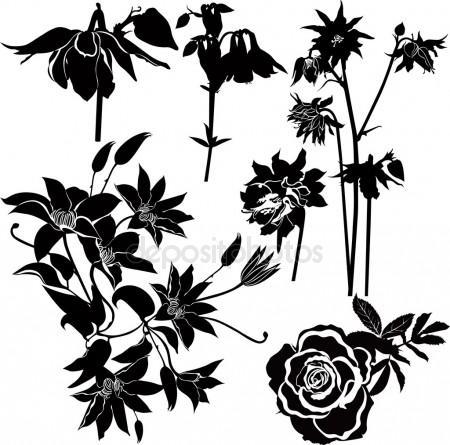 450x445 Columbine Flower Stock Vectors, Royalty Free Columbine Flower