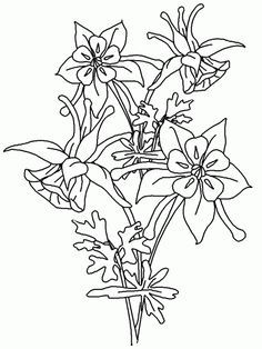 236x314 I'D Rather Be Drawing! Columbine Flowers And Butterfly Artsy