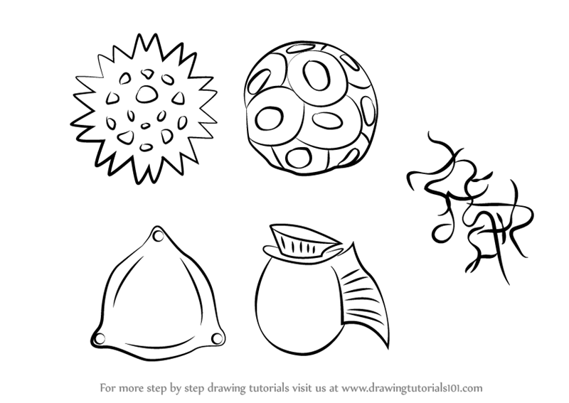 800x567 Learn How To Draw Phytoplankton (Plants) Step By Step Drawing