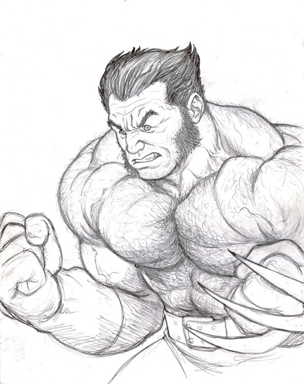 600x758 30 Wolverine Cartoon Character Sketches