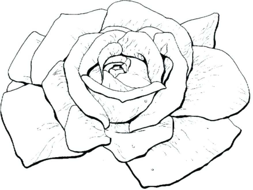 878x659 Compass Rose Coloring Sheets