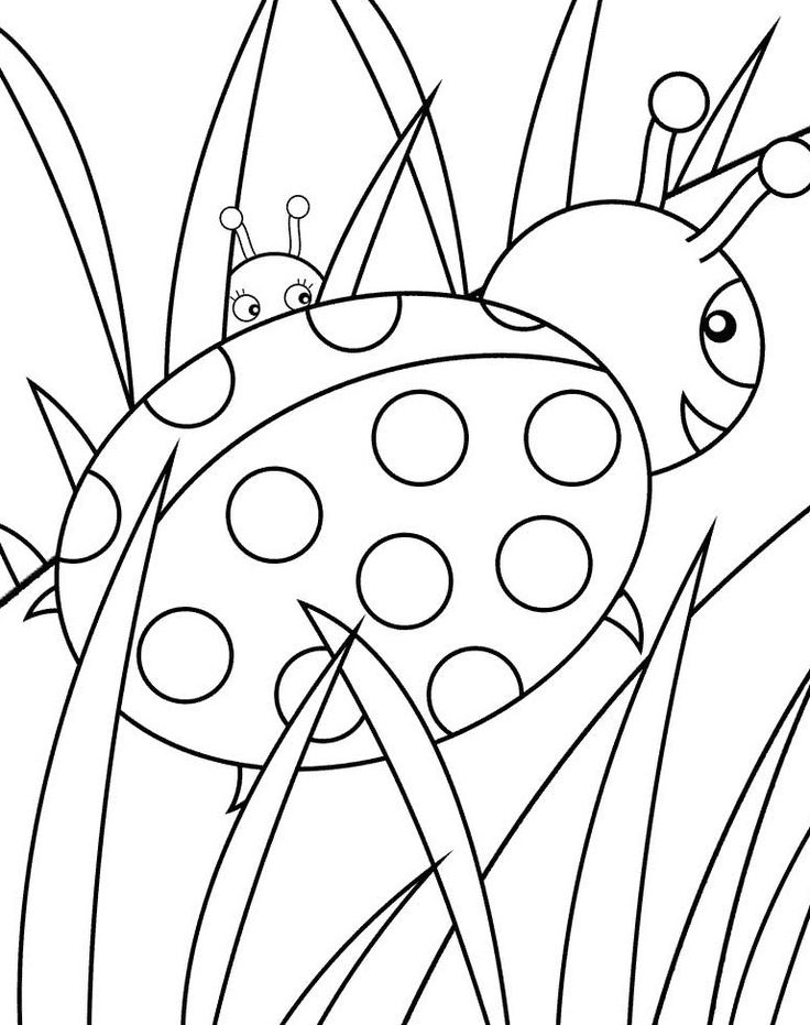 736x931 27 Best Bugs Images On Kids Net, Insects Bugs