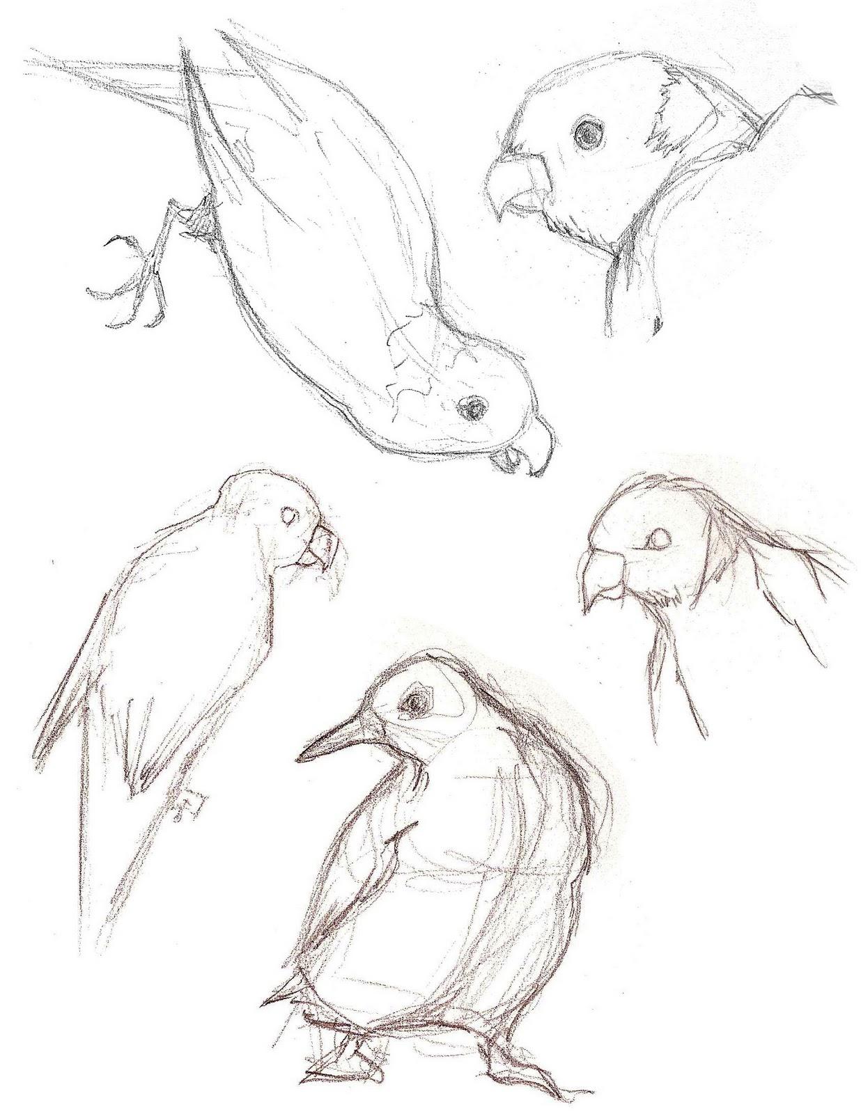 1236x1600 Monamation Aquarium Sketches
