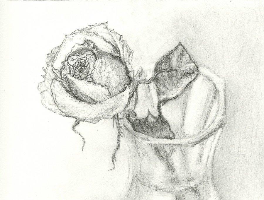 900x683 Rose In A Vase By Ja Kitsu Ryou