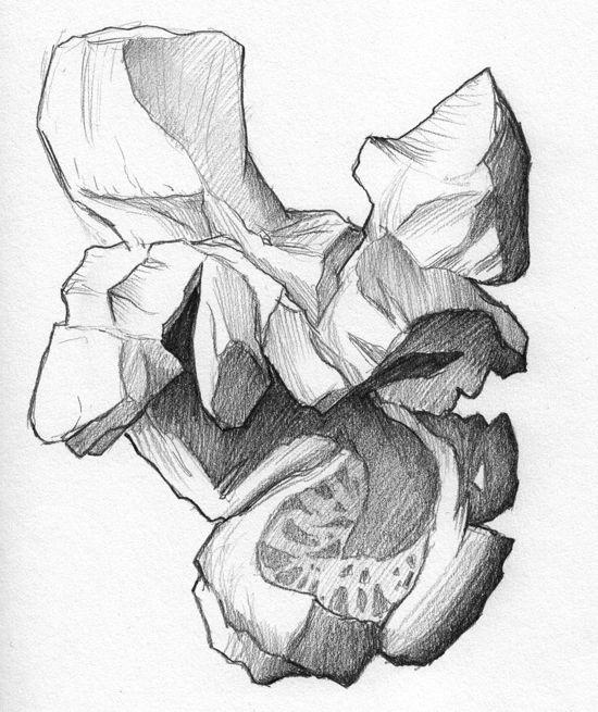 550x655 Still Life Drawing Ideas For Art Students Popcorn, Art