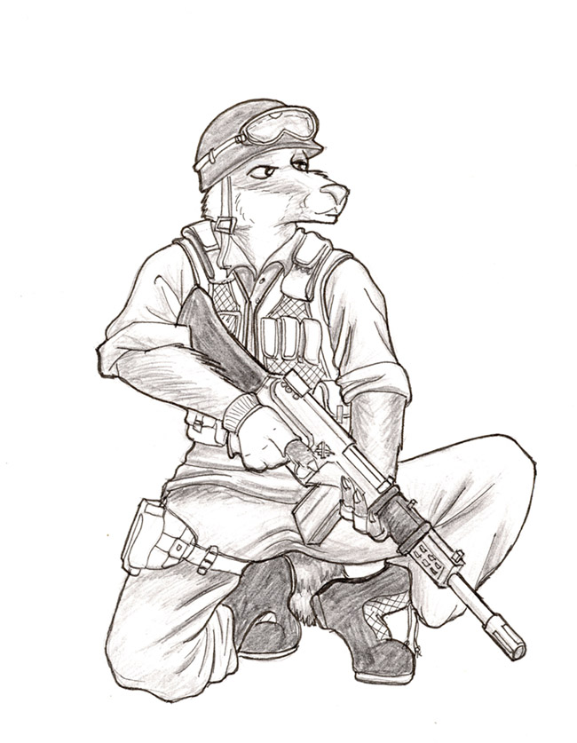 650x837 Contest Badger Soldier By Steinwill