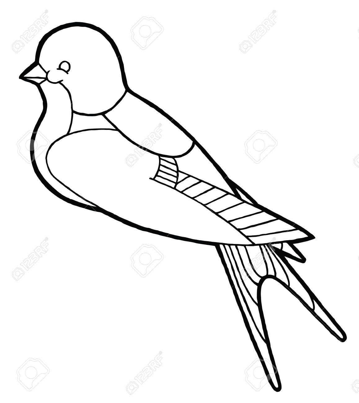 1158x1300 Contour Hand Drawing Contour Hand Drawing Swallow