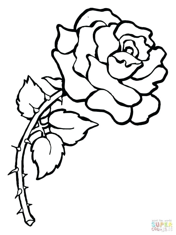 728x971 Convert Picture To Coloring Page Convert Best Photo Gallery