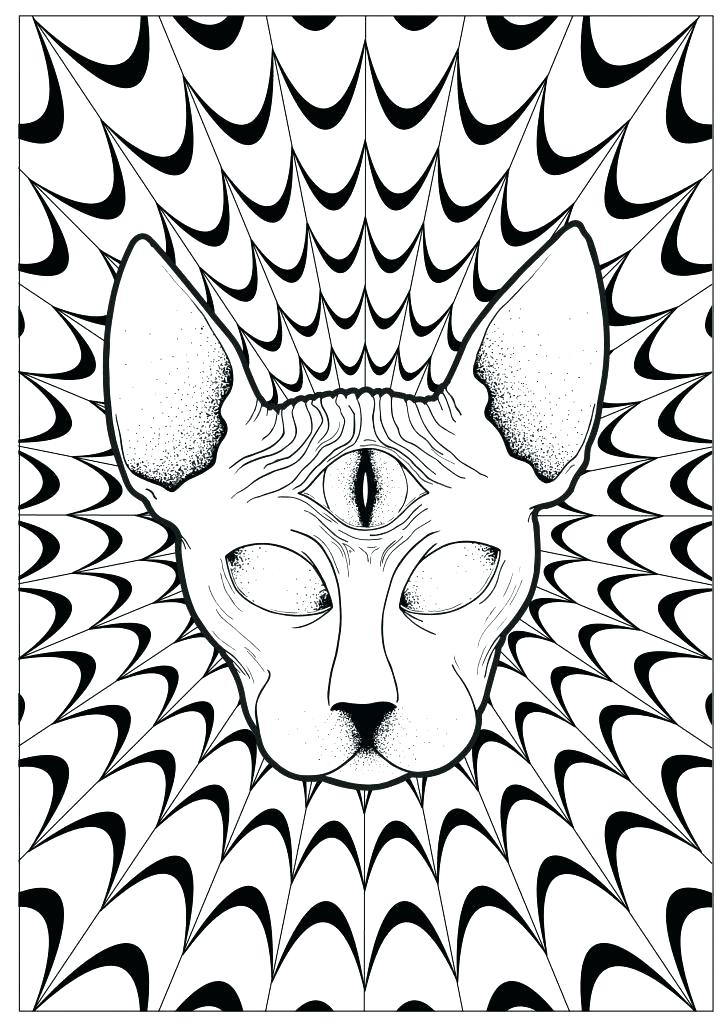 728x1030 Convert Picture To Coloring Page