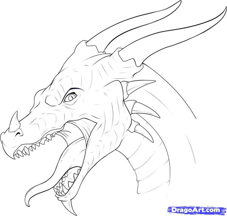 736x700 92 Best Dragons Images On Pinterest Sketches Drawing Ideas And
