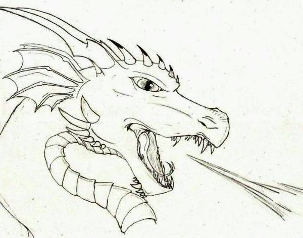 Cool Dragons Drawing