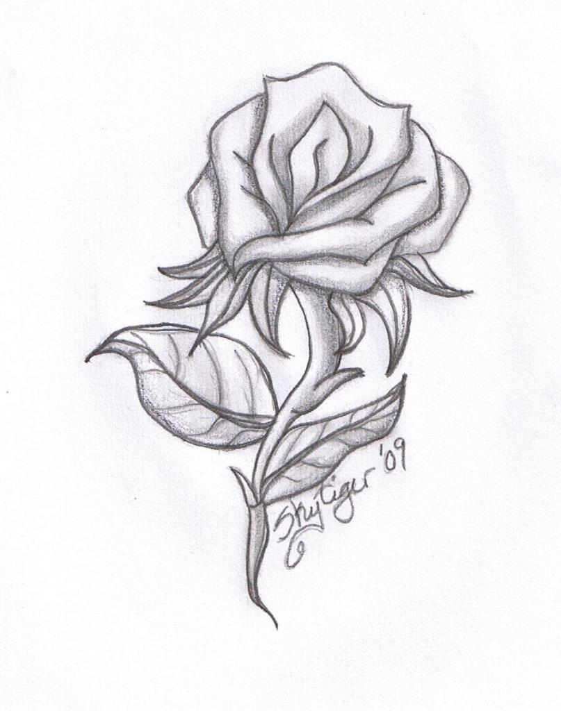 807x1024 Gallery Cool Drawings Ideas,