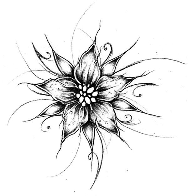 Cool Drawing Of Flowers