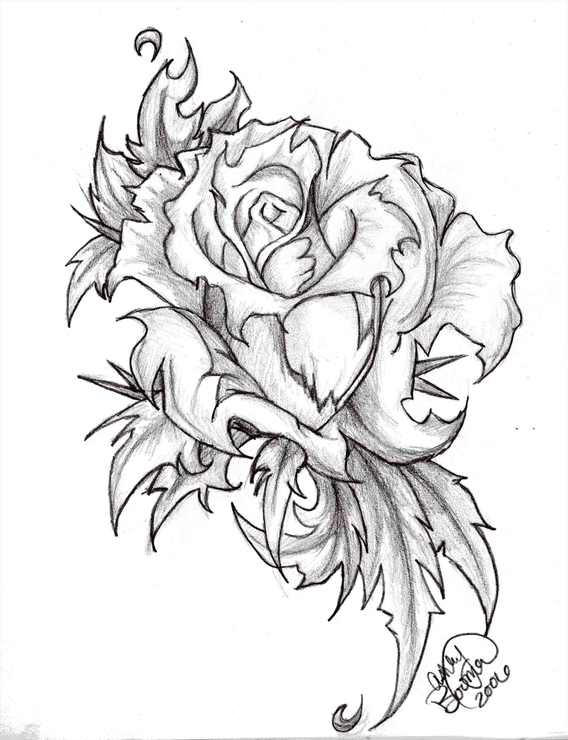 1900x2475 The Images Collection Of With Roses And Wings Download Clip Art