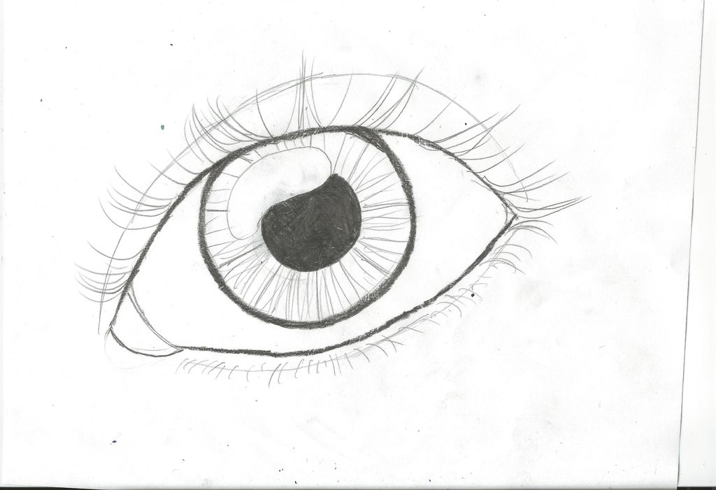 1024x701 How To Draw An Eye (Updated) 15 Steps