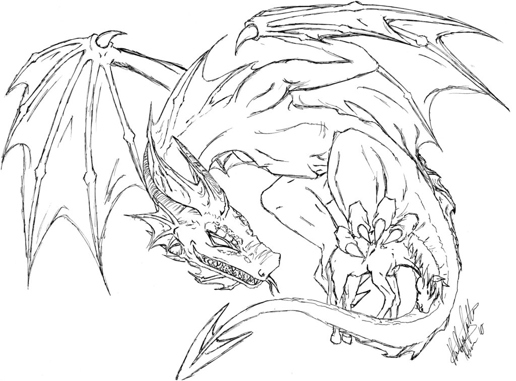 1024x756 Dragon Line Sketch 1 By A1ucards4nge1