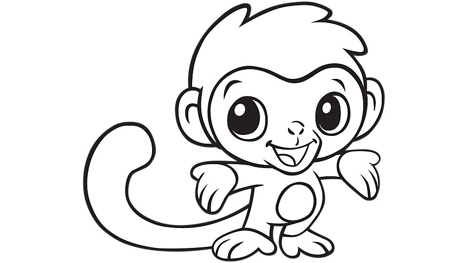 Cool Monkey Drawing