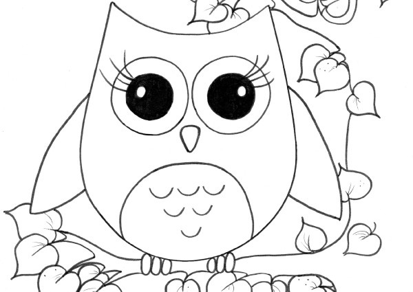 cool owl drawing at getdrawings com free for personal use cool owl