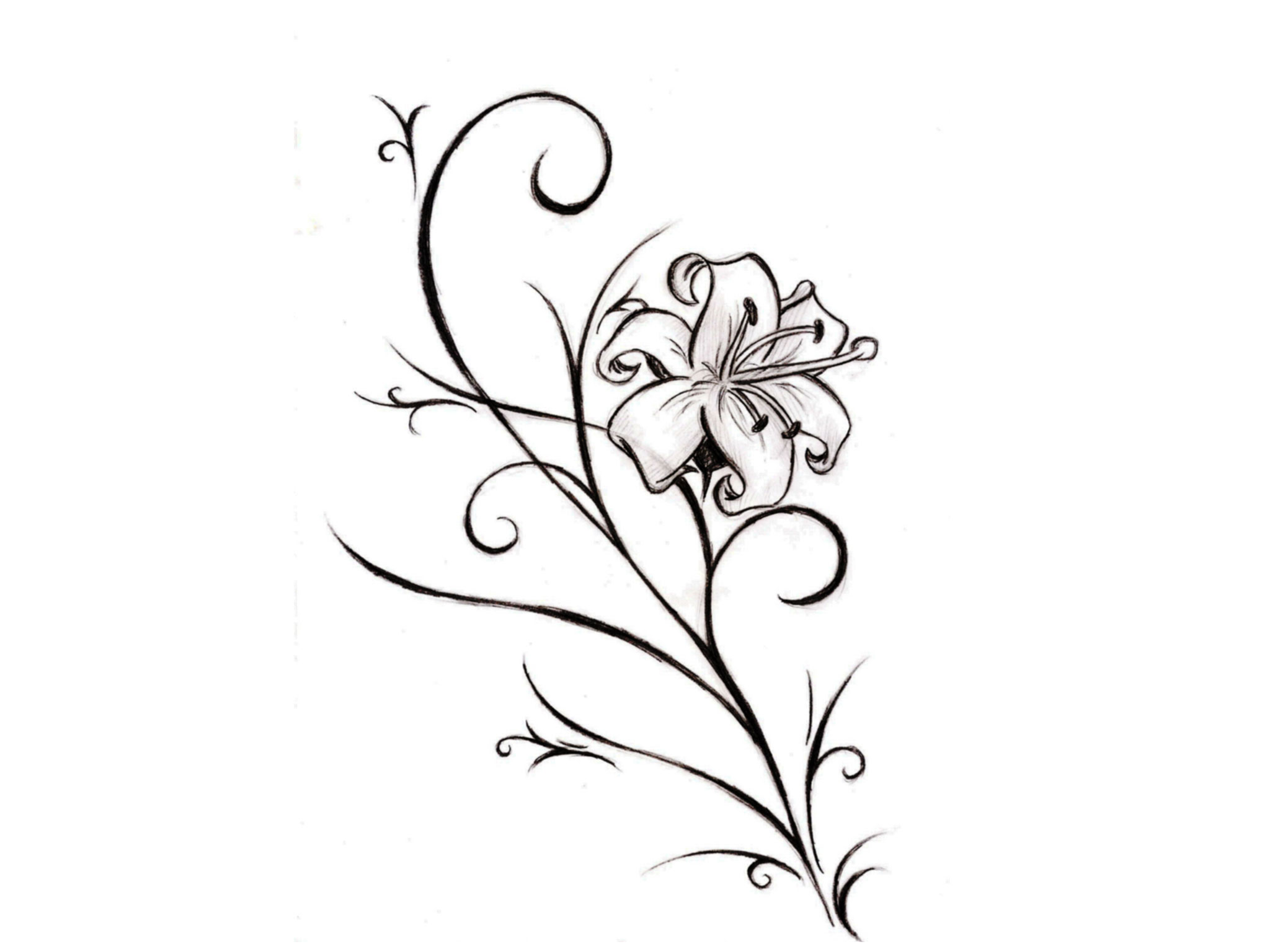 Cool Tattoo Drawing At Getdrawings Com Free For Personal Use Cool