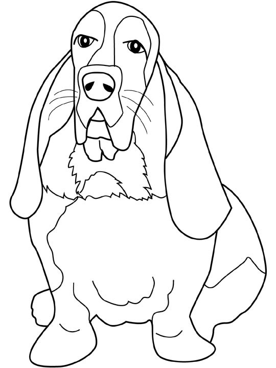 540x720 Dogs Coloring Pages Basset Hound Coloring Book Dogs Amp Cats