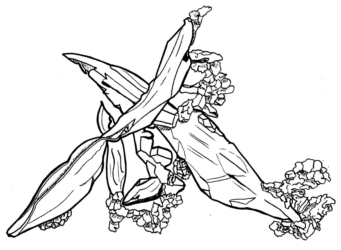 1089x800 Copper Coloring Page 3