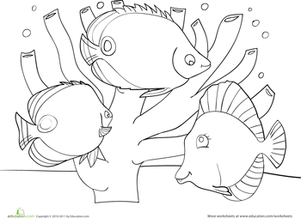 Coral Reef Drawing At Getdrawings Com Free For Personal Use Coral