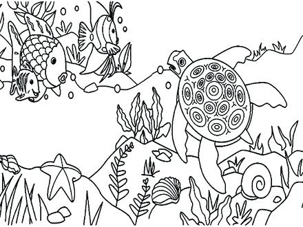 440x330 Top Rated Coral Reef Coloring Page Pictures Pin Fish