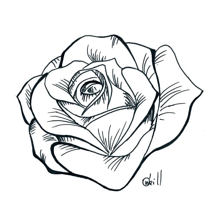 900x817 Draw Stencil Simple Rose Tattoo Stencil Drawing Corel Draw Stencil