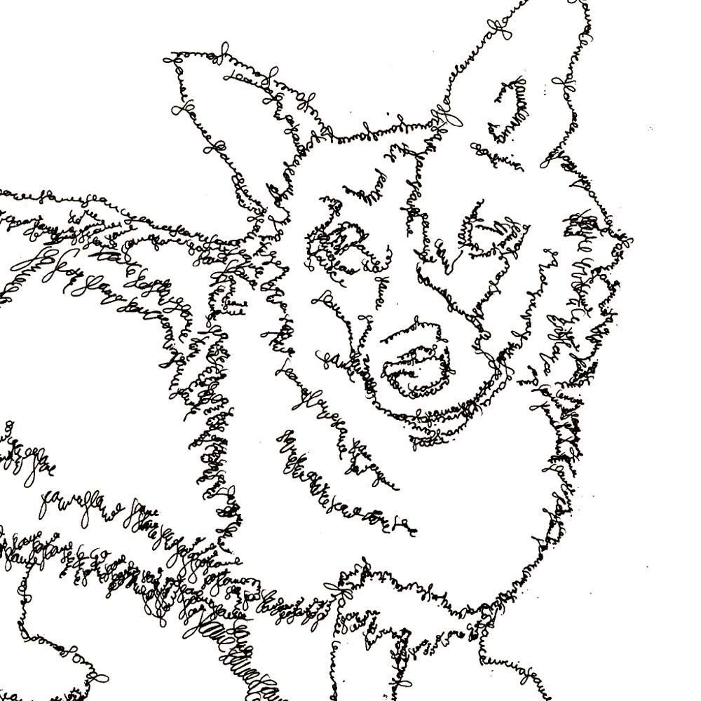 Corgi Line Drawing