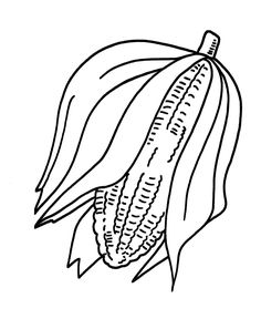 236x288 Coloring Pages Of Corn Fields It39s National On The Cob Day