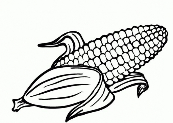 600x427 Corn Coloring Pages
