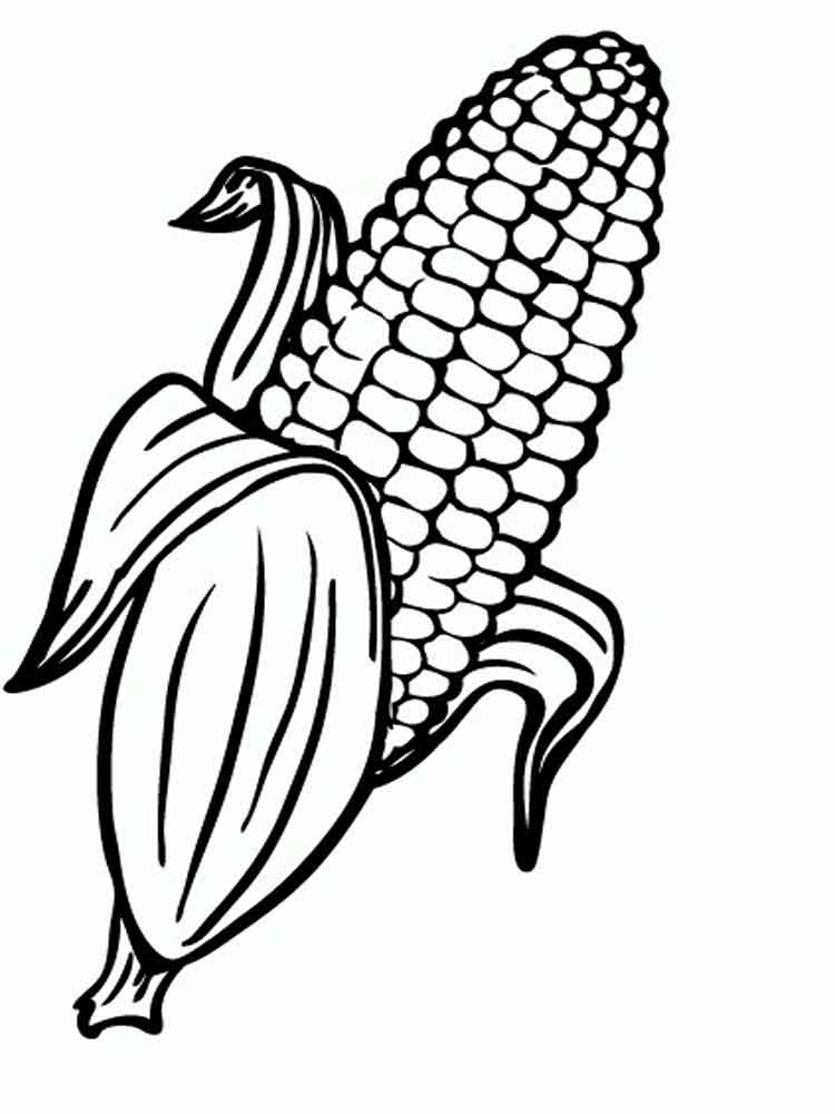 750x1000 Coloring Page Of Indian Corn Tags Autumn