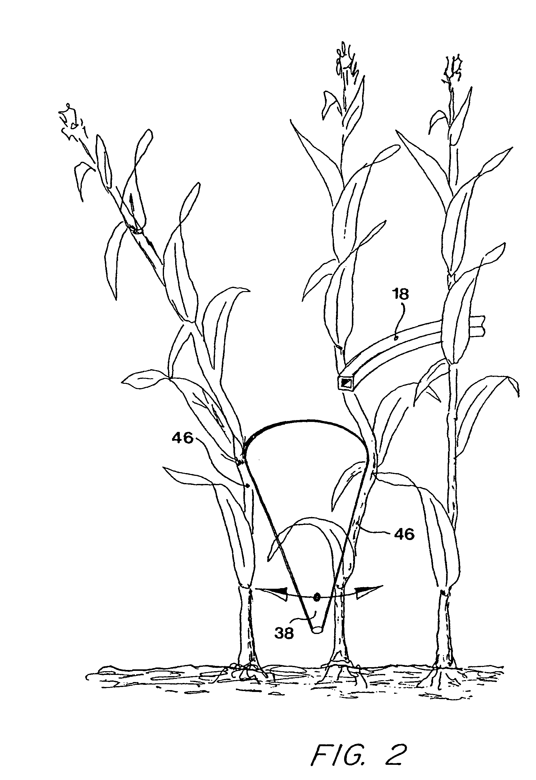 1729x2516 Corn Stalk Coloring Pages
