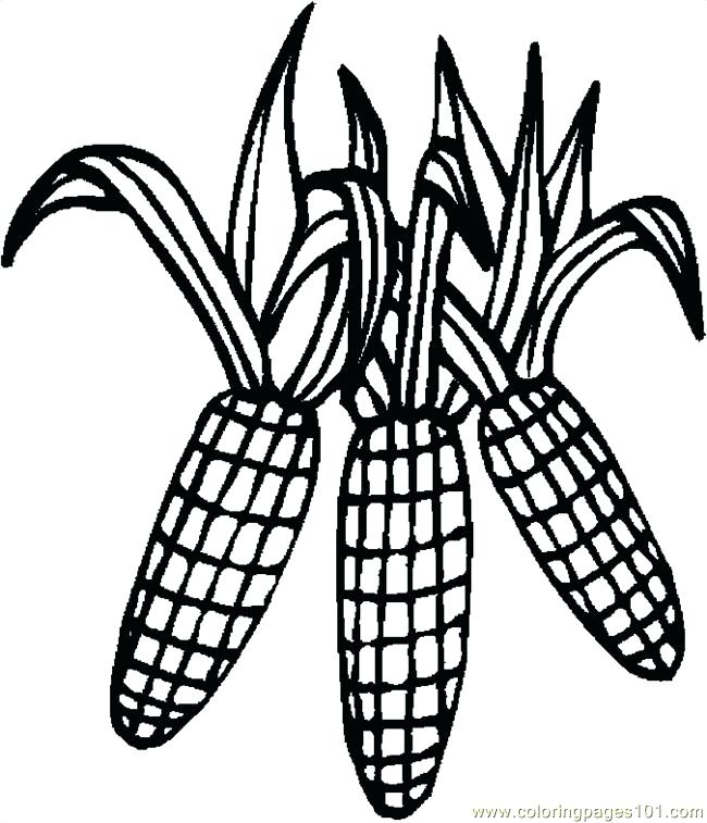 coloring pages of corn - photo#16