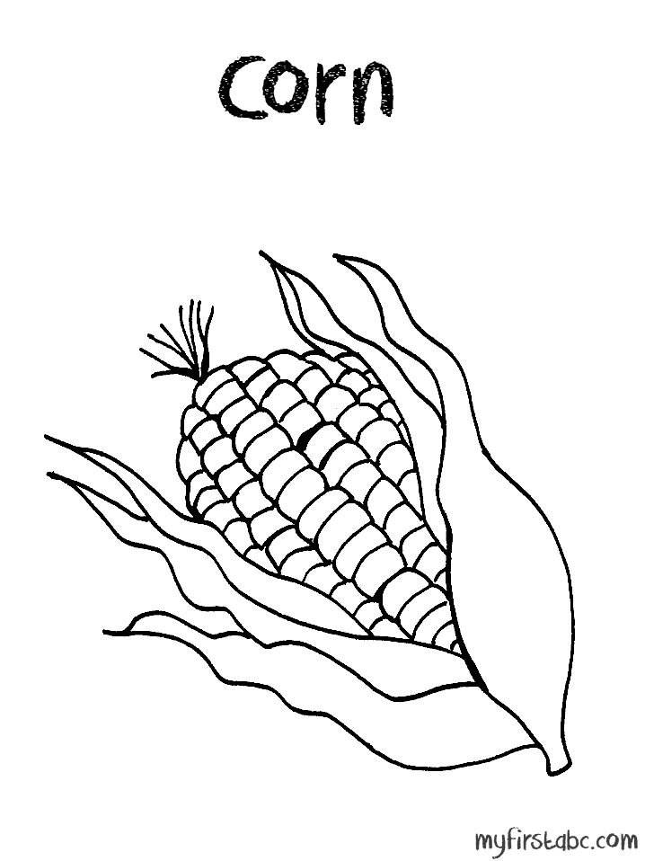 718x958 Corn Stalk Coloring Page Many Interesting Cliparts