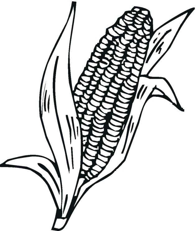 630x742 Coloring Page Of Corn Corn Stalks Coloring Pages Coloring Pages