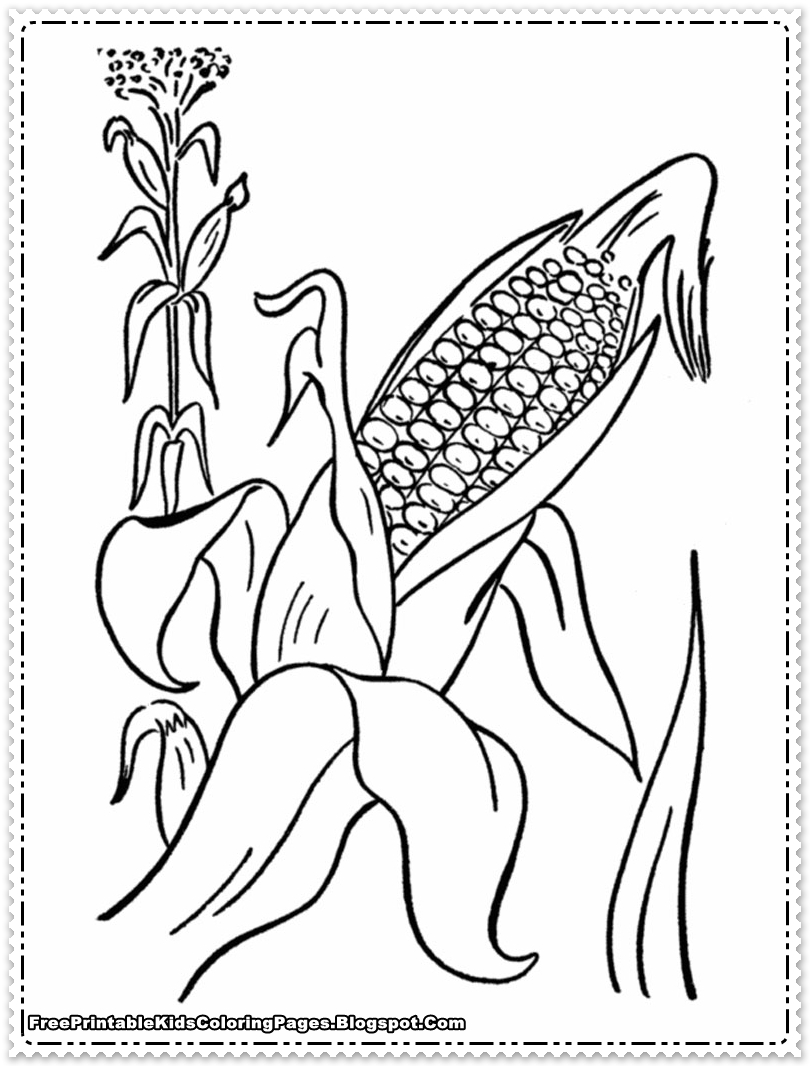 Pumpkins cornstalks and apples coloring pages ~ Corn Stalks Drawing at GetDrawings.com | Free for personal ...