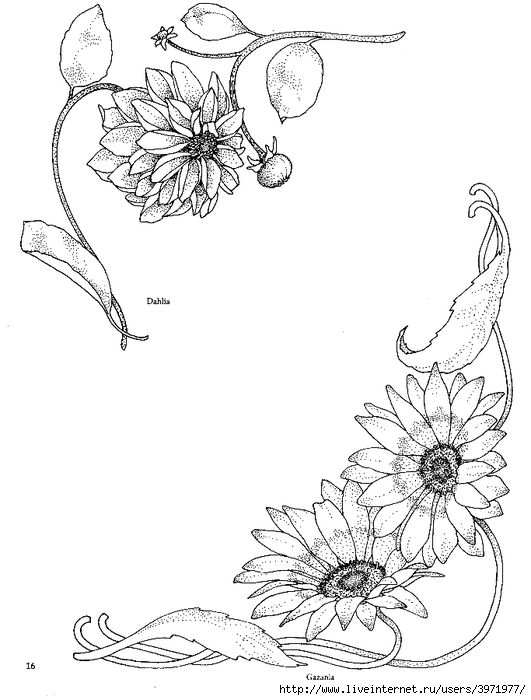 531x700 916 Best Dibujos Jc Images On Embroidery Designs