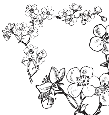 380x400 Antique Flowers Corner Engraving Vector Holidays Easter