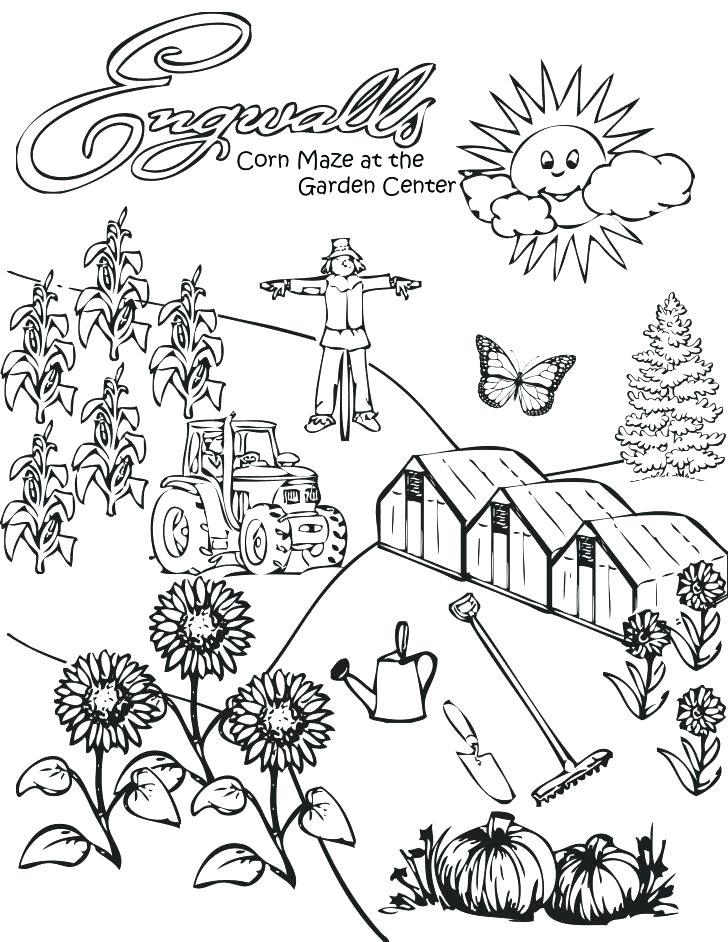 728x942 Corn Stalk Coloring Page Popcorn Machine Coloring Pages Corn Stalk
