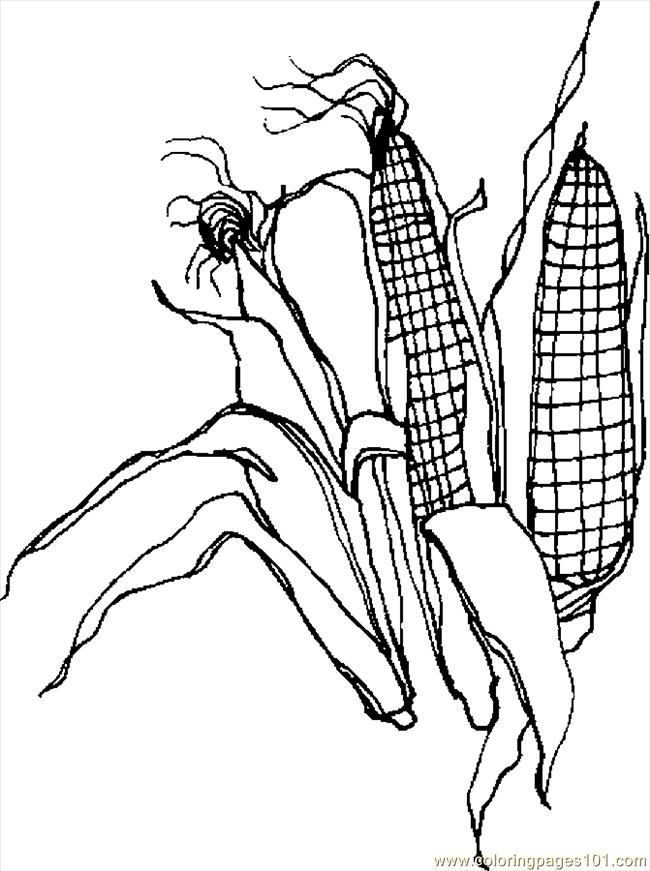 650x871 Corn Stalk Coloring Pages