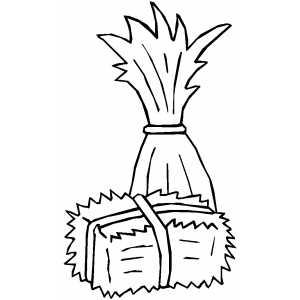 300x300 Cornstalk And Hay Coloring Page