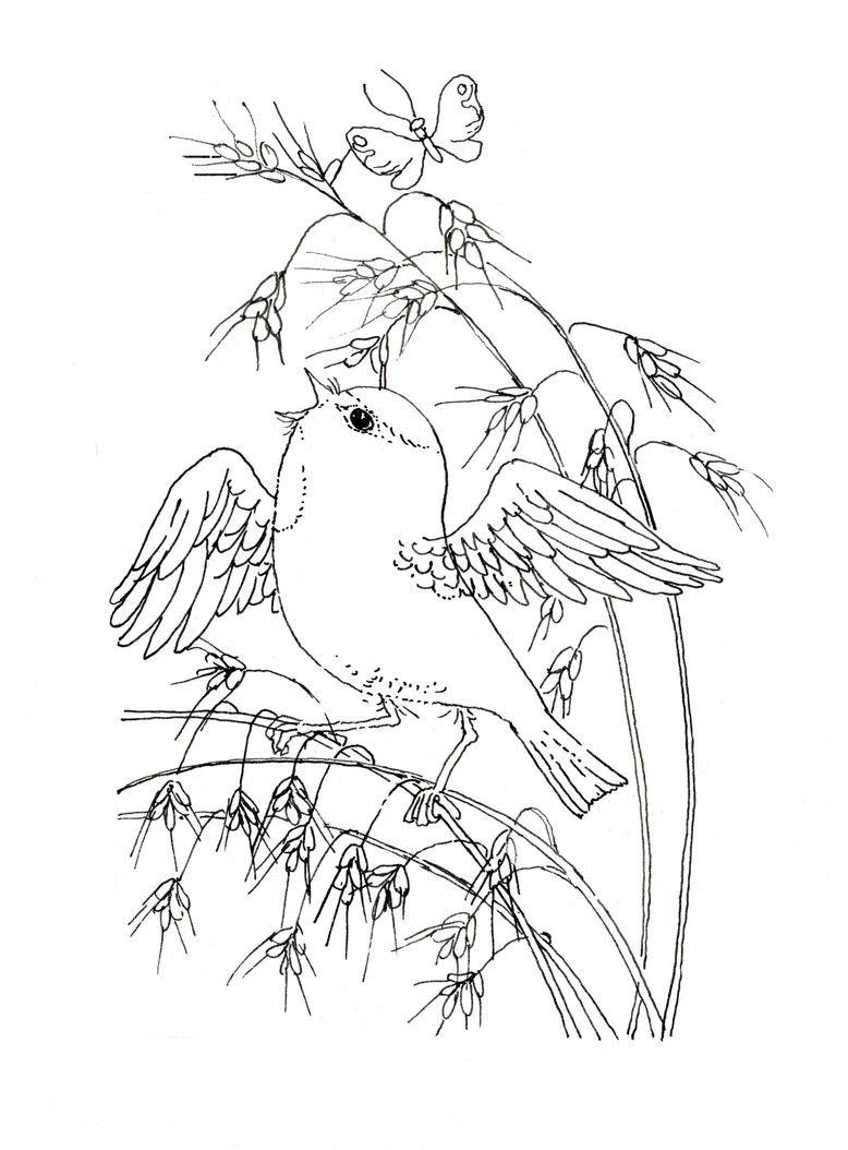 778x1054 Bird, Cornstalk