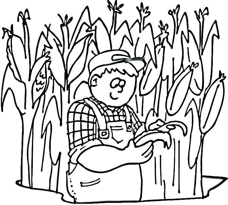 750x673 Corn Coloring Sheets Corn Stalk Coloring Page Candy Corn Coloring