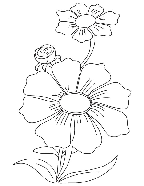 612x792 Purple Cosmos Coloring Page Download Free
