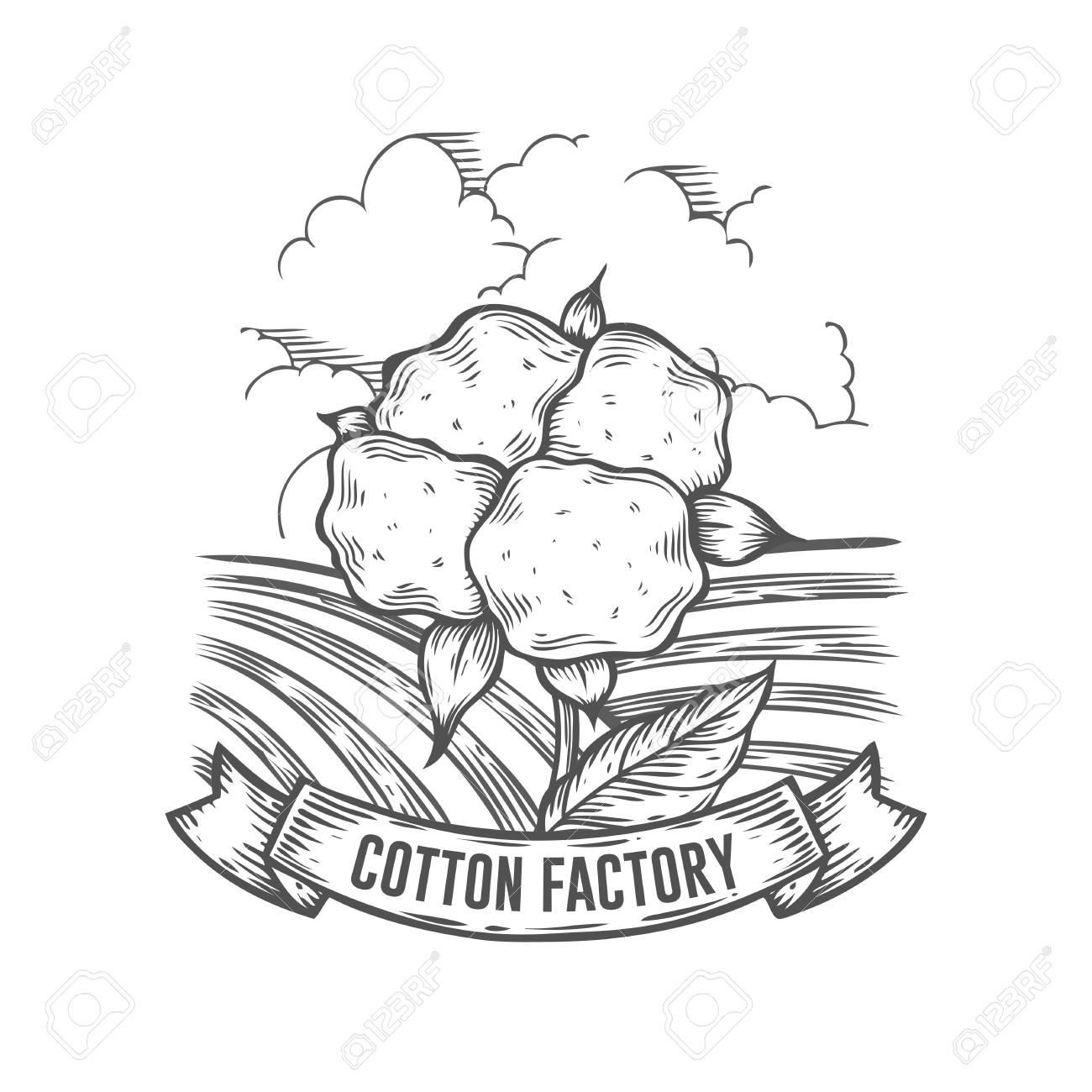 1300x1300 Cotton Farm Badge. Monochrome Vintage Engraving Cotton Flower