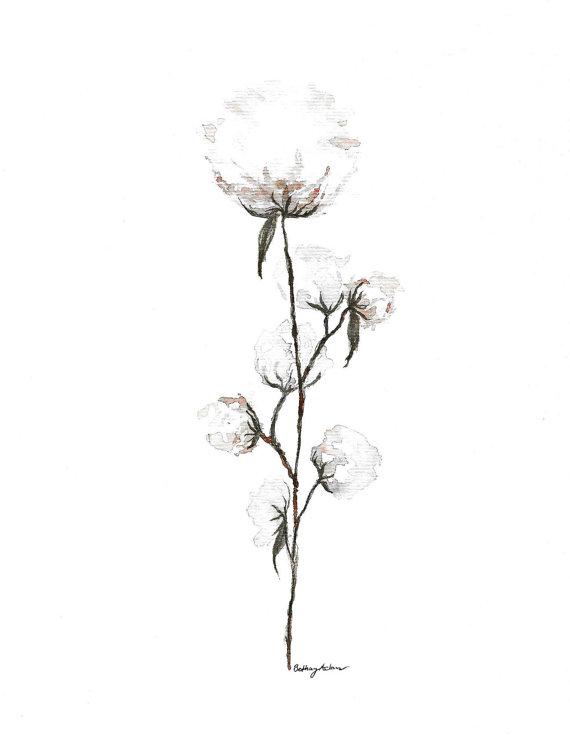 570x736 Giclee Print Organic Cotton Stem Watercolor Painting Cotton