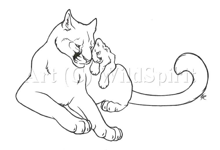 cougar drawing at getdrawings com free for personal use cougar