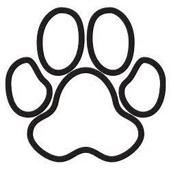 Cougar Paw Drawing