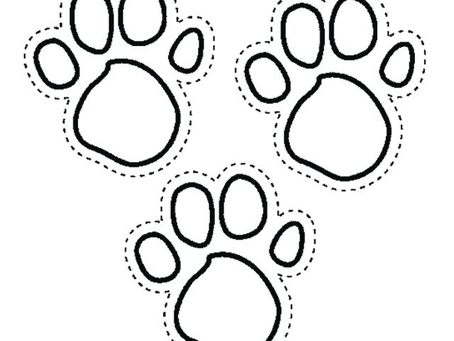 640x480 Paw Print Coloring Page